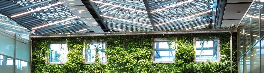 πράσινη στέγη και βιοκλιματικό σπίτι