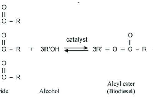 Βιοντίζελ ή Biodiesel το απόλυτο Βιοκαύσιμο.